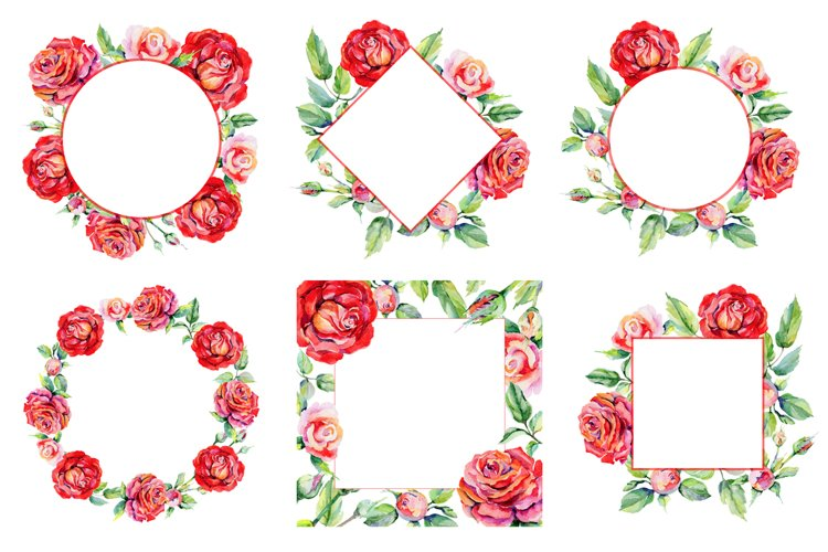Roses PNG watercolor flower set - Free Design of The Week Design1