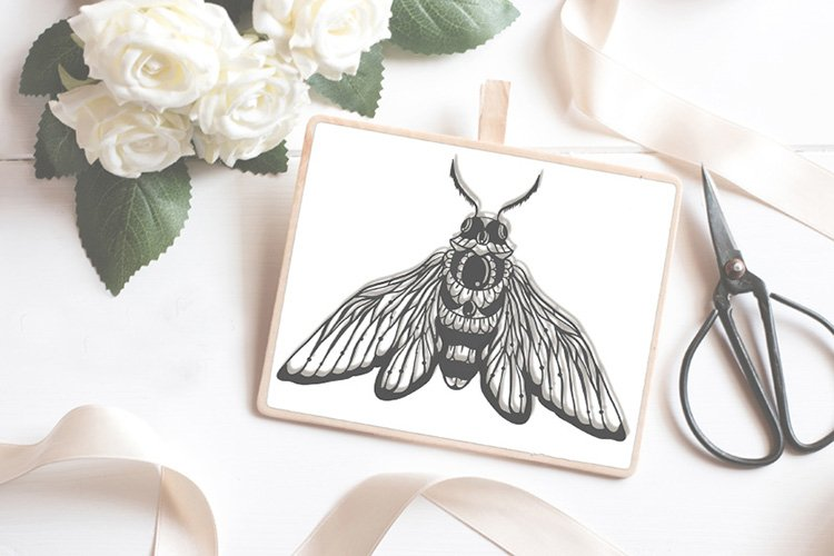 Bug insect papercutting sublimation graphic illustration example image 1