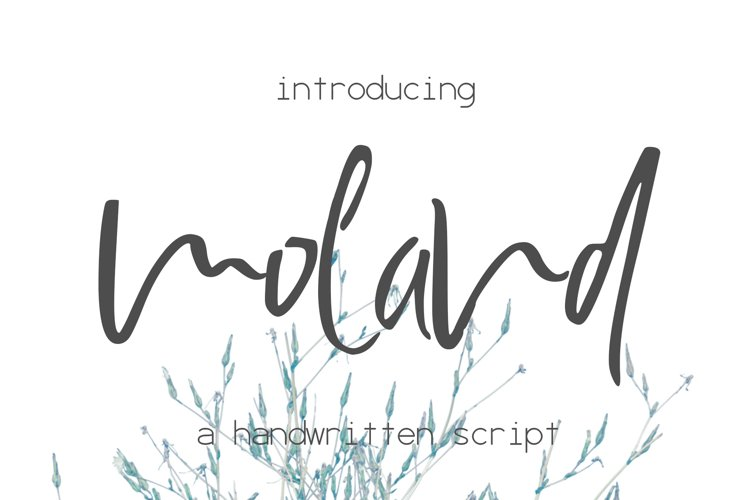 Moland Font example image 1