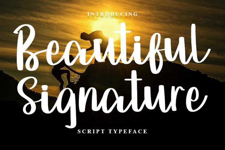 Beautiful Signature   A Script Typeface example image 1