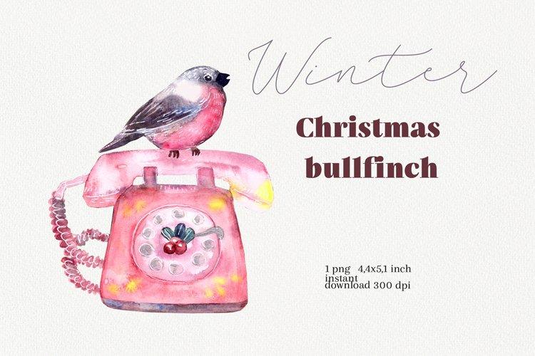 Watercolor bullfinch illustration, Merry Christmas decor example image 1