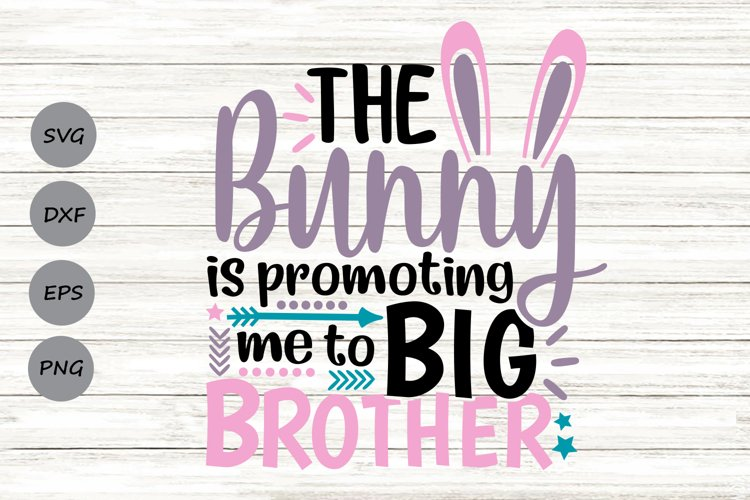 The Bunny Is Promoting Me To Big Brother Svg, Easter Svg. example image 1