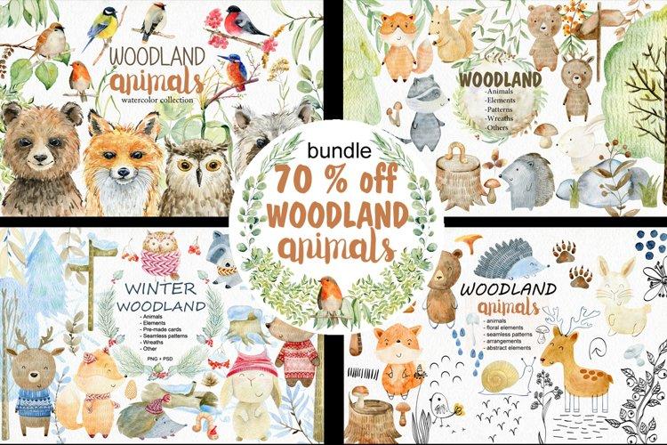 70 off. Bundle. Woodland animals. example image 1