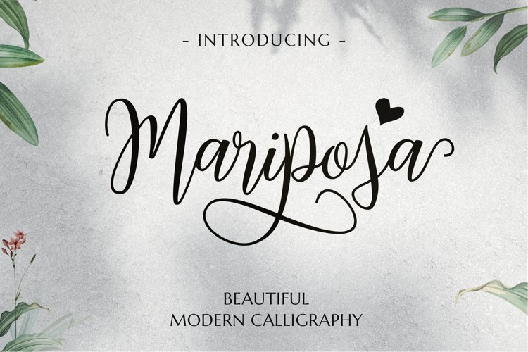 Mariposa Script Calligraphy example image 1