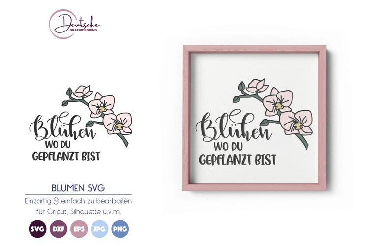 Orchidee SVG | Blühen SVG example image 1