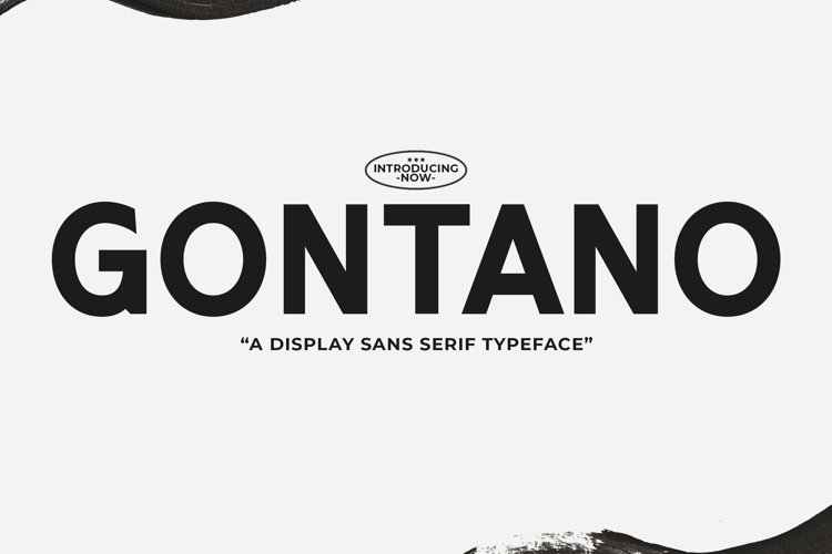 Web Font Gontano example image 1