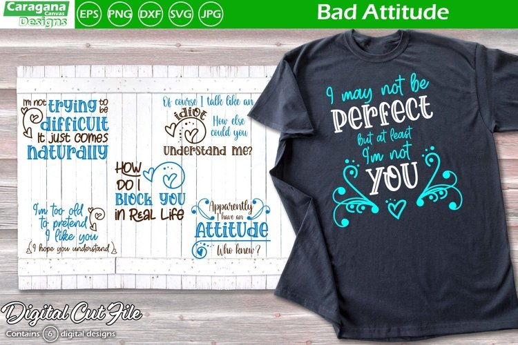 Bad Attitude example image 1