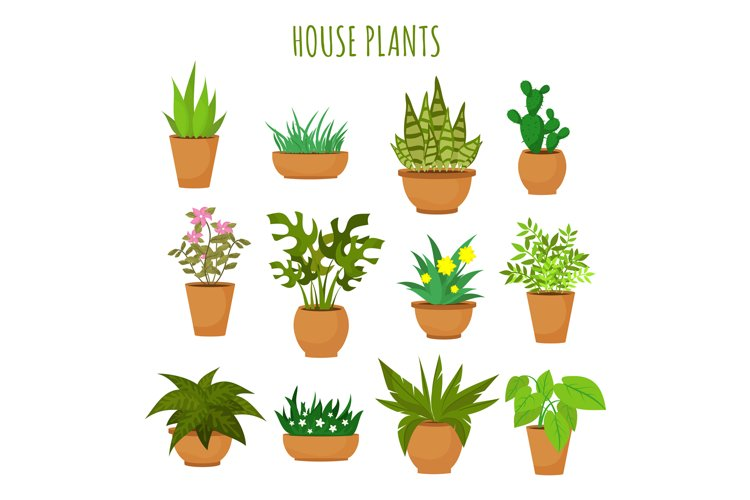 Indoor house green plants and flowers isolated on white vect example image 1