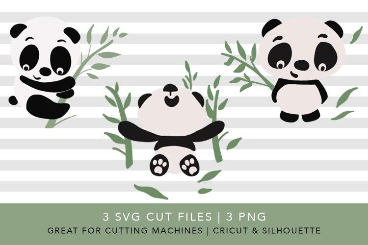 Panda and Bamboo | SVG PNG