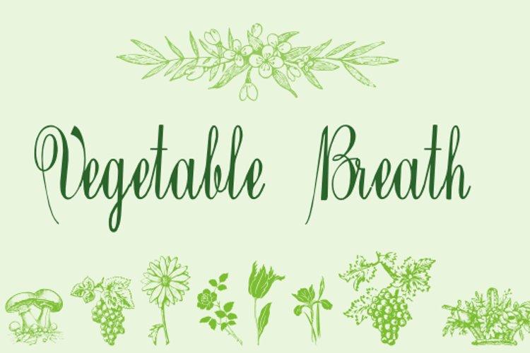 Vegetable Breath example image 1
