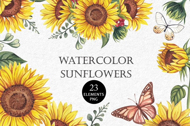 Watercolor sunflowers PNG. example image 1