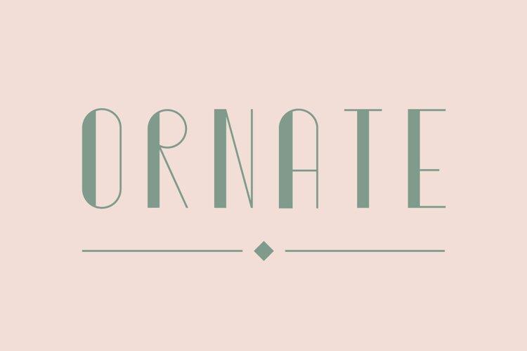 Ornate Typeface example image 1