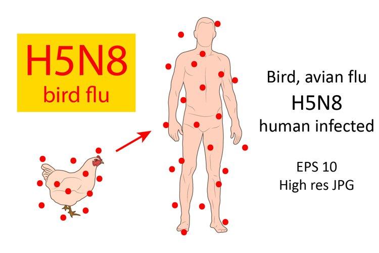 Bird avian flu H5N8, human infected.