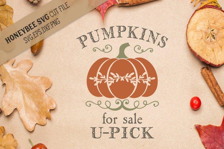Pumpkins For Sale U-Pick svg example image 1