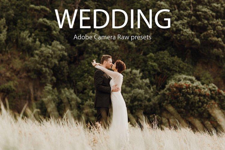 75 authors professional wedding presets
