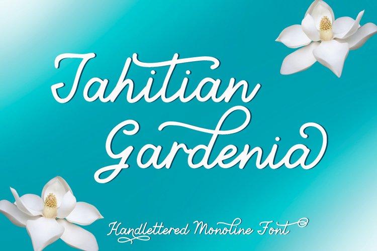 Tahitian Gardenia - Handlettered Monoline Font