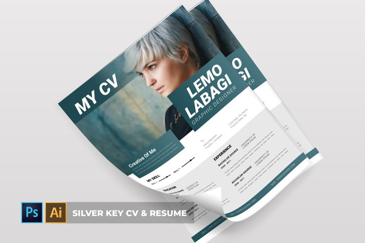 Silver Key | CV & Resume example image 1