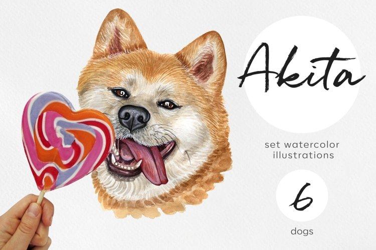 Akita. Watercolor dog illustrations. Cute 6 dog