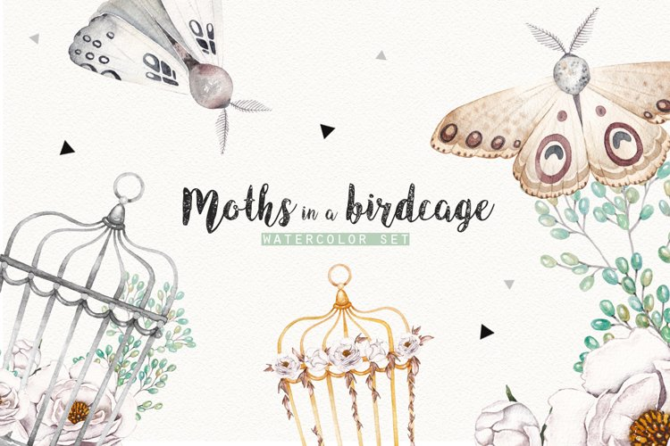 MOTHS and BIRDCAGE watercolor set example image 1