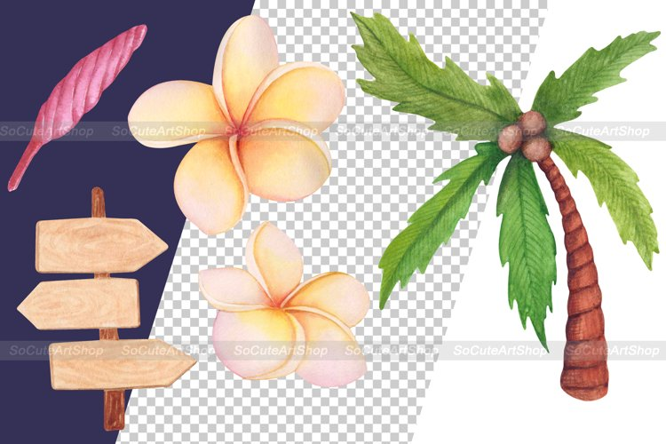 Watercolor Luau party PNG clipart, summer beach clipart example 6