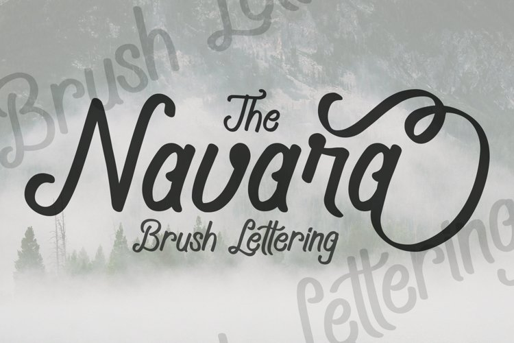 Navara Brush Font example image 1
