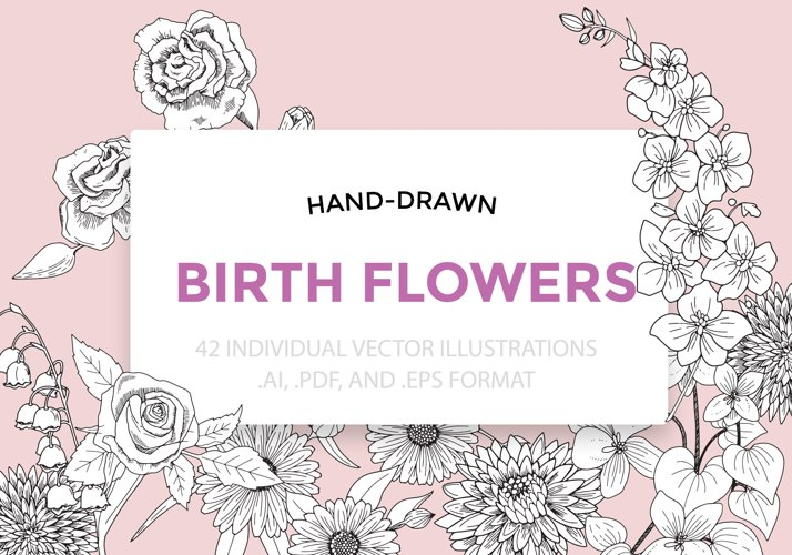 Birth Flowers Vector Illustrations example image 1