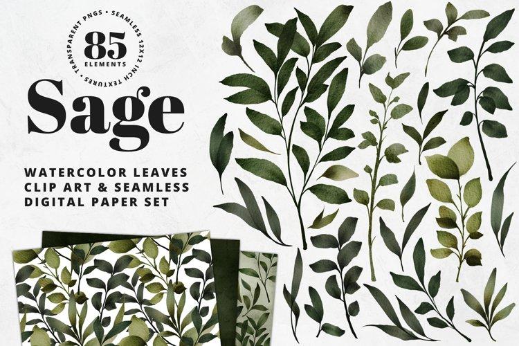 Sage Leaves Watercolor Clip Art & Digital Paper Set