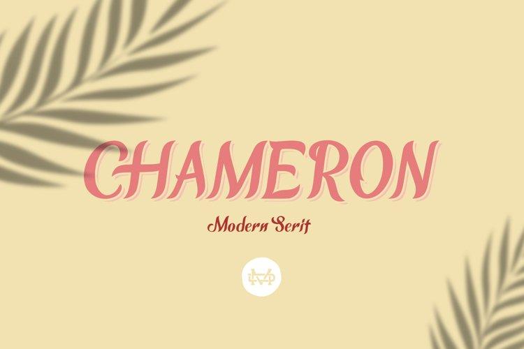 CHAMERON example image 1