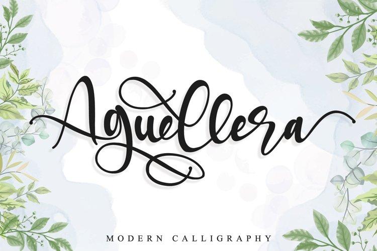 Aguellera example image 1