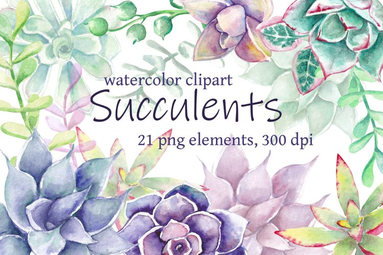 Watercolor succulent clipart, Hand drawn watercolor succulen example image 1