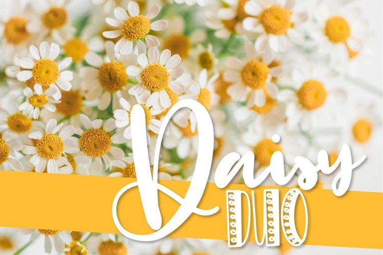 CLN- Daisy Duo - A Happy Font Pair Perfect For Spring! example image 1