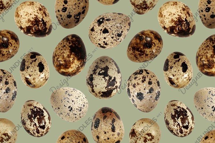 Quail eggs bird food kitchen photo seamless pattern texture example image 1