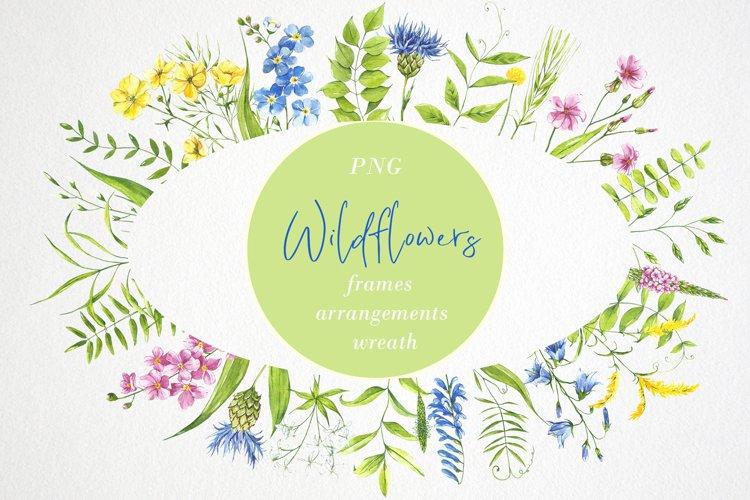 Watercolor flower clipart. Wildflowers. Wreath, frame
