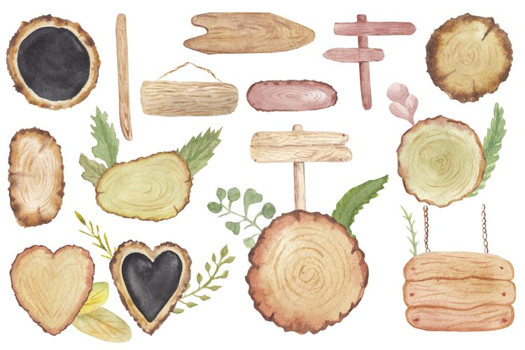 Watercolor Wood Slices Clipart png set, Tree, Green Leaves example image 1