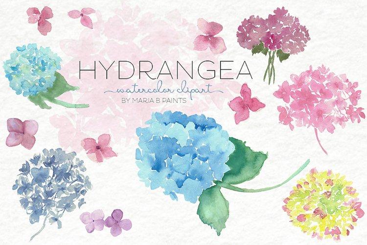 Watercolor Clip Art - Hydrangea example image 1
