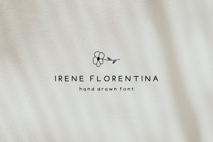 Hand Drawn Font with Illustrations | Handwritten Font example image 1