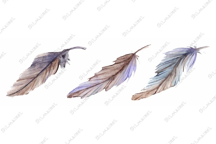 Watercolor gray grey blue violet brown feather set isolated example image 1