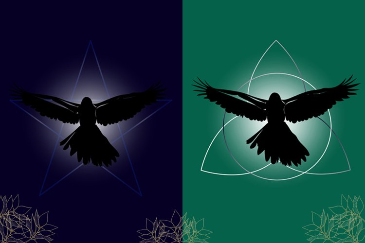 Black raven silhouette in the star and in the shamrock