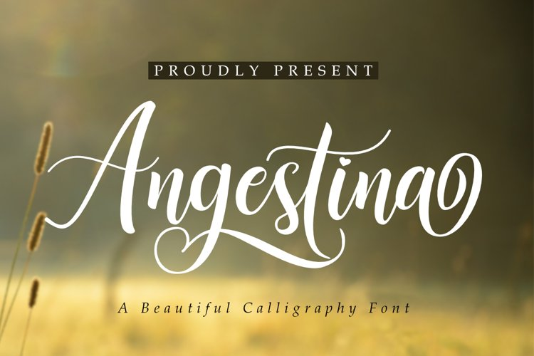 Angestina | A Calligraphy Font example image 1
