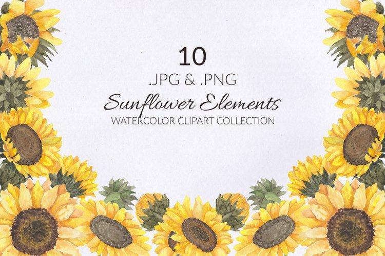 10 Sunflower Watercolor Illustration Set