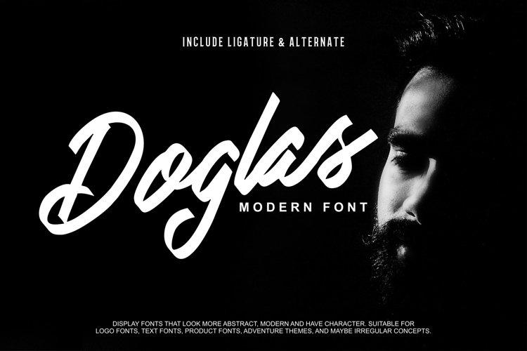 Doglas | Modern Script Font example image 1