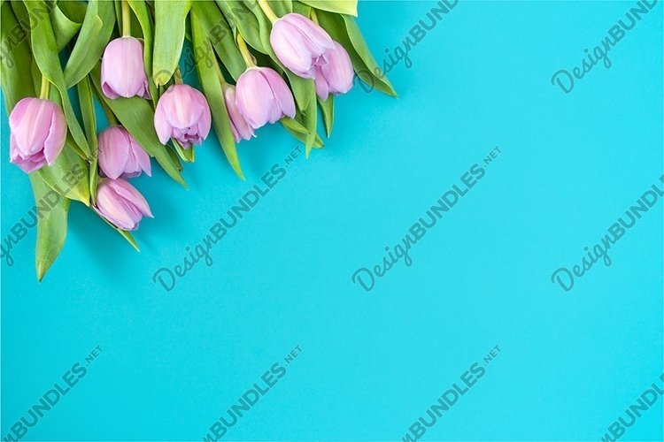 Spring background with tulips. example image 1