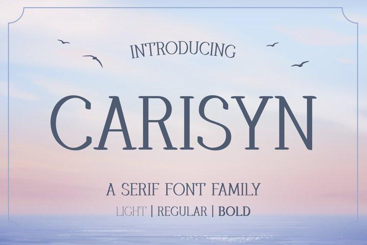 Carisyn - Serif Font Family example image 1