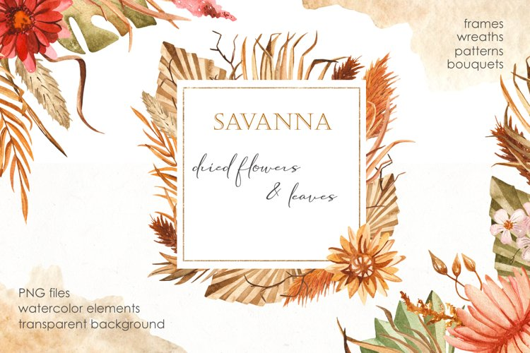 Savanna dried flowers and leaves Watercolor example image 1
