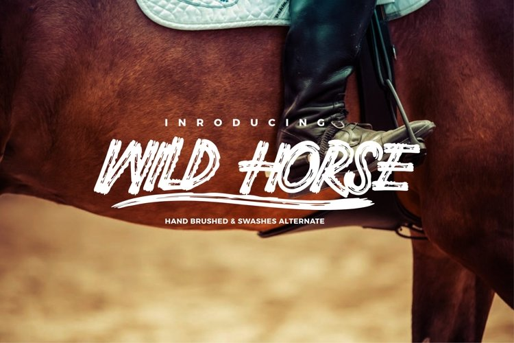 Wild Horse and Swashes