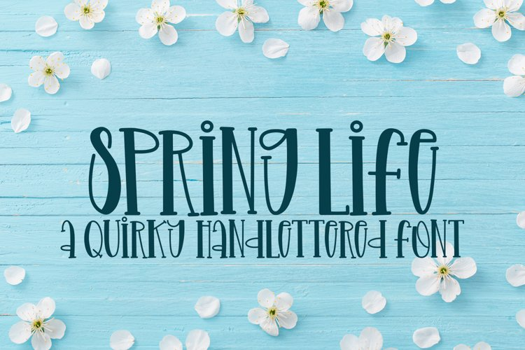 Spring Life - A Quirky Handlettered Font example image 1