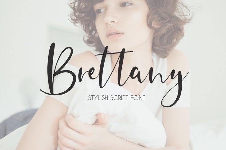 Brettany Script Font example image 1