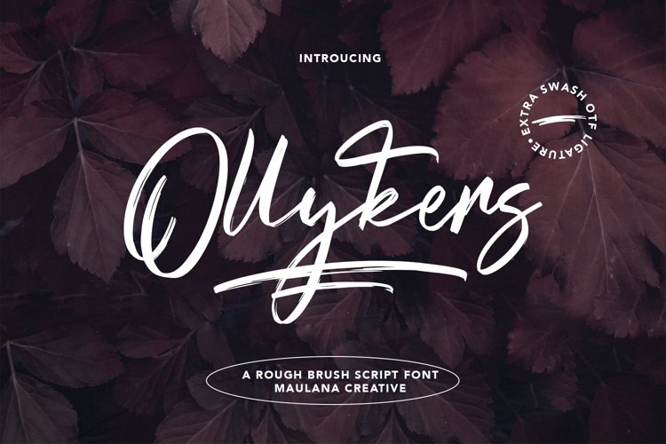 Ollykers Brush Script Font example image 1