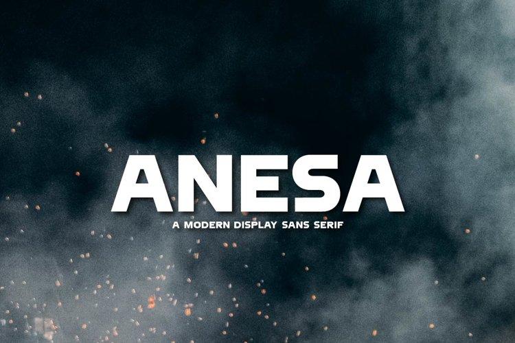ANESA example image 1