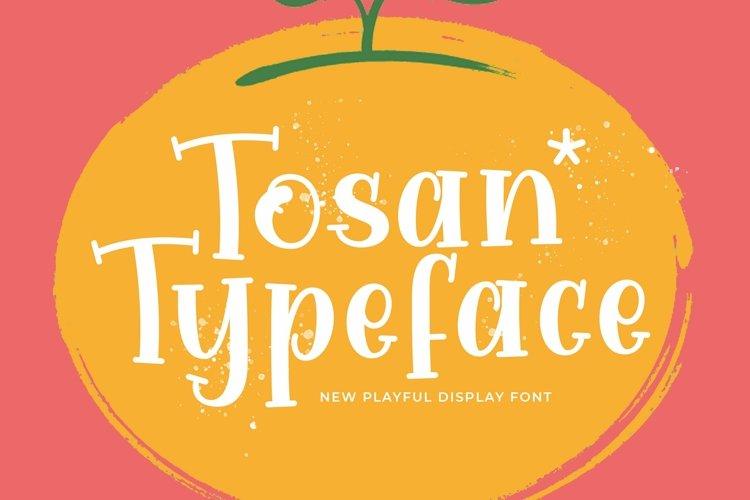 Web Font Tosan example image 1